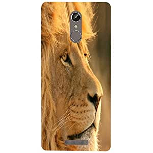 Casotec Lion Design 3D Printed Hard Back Case Cover for Gionee S6s
