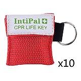 IntiPal 1