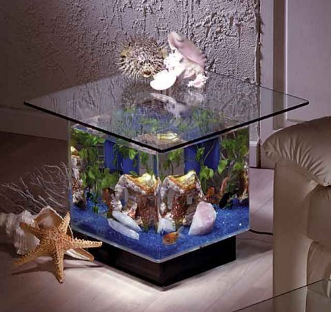 Aqua End Table Aquarium (B000K7GEW6)