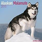 Alaskan Malamute Calendar - Just Alaskan Malamutes Calendar - 2015 Wall calendars - Dog Calendars - Monthly Wall Calendar by Avonside