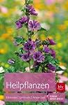Heilpflanzen: Erkennen | Sammeln | An...