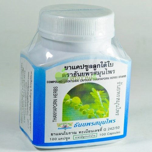 Phyllanthus Amarus 100 Capsules Herbal Supplement