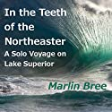 In the Teeth of the Northeaster: A Solo Voyage on Lake Superior (       UNABRIDGED) by Marlin Bree Narrated by Patrick Conn