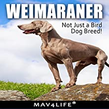Weimaraner: Not Just a Bird Dog Breed! Audiobook by  Mav4Life Narrated by Millian Quinteros