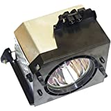Electrified BP96-00224J Replacement Lamp with Housing for Samsung TVs