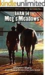 Barn 14 - Meg's Meadows (Winning Odds...