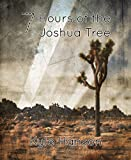 7 Hours of the Joshua Tree