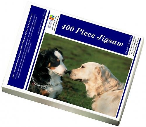 photo-jigsaw-puzzle-of-dogs-bernese-mountain-dog-and-golden-retriever-sniffing-each-others-nose