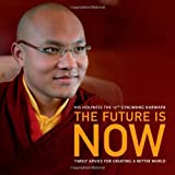 The Future Is Now: Timely Advice for Creating a Better World [Paperback] by D...