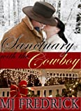 Sanctuary with the Cowboy (A Christmas Novella)