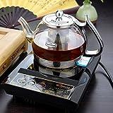 Ian Heat Resistant Glass Kettle Tea Pot