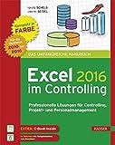 Excel 2016 im Controlling: Professionelle Lösungen für Controlling