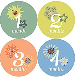 This Little Piggy Baby Month Stickers - Months 1 Through 12; Baby Monthly Stickers Are Great for Baby Photo Albums, Keepsakes & First Step Books. Also Baby Shower Gifts. by One Little Piggy Designs