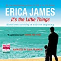 It's the Little Things Audiobook by Erica James Narrated by Julia Franklin