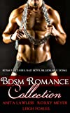 img - for BDSM Romance Collection (BDSM Romance. Billionaire Doms. BDSM Fantasies. Bad Boys.) book / textbook / text book