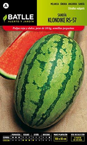 semillas-batlle-015704bols-sandia-klondike