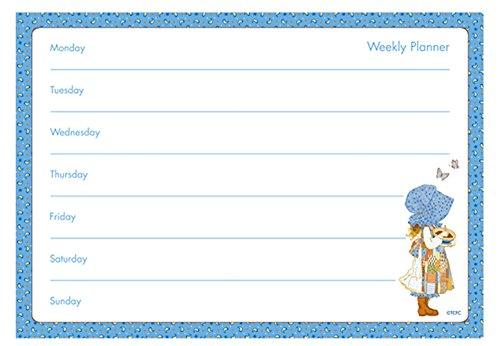 a4-weekly-planner-holly-hobbie-design-tear-off-planner
