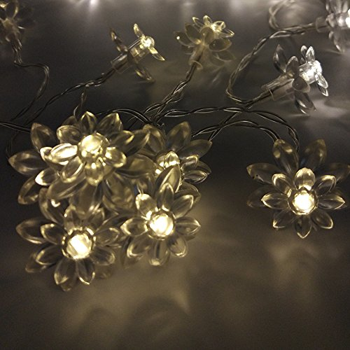 2m-66ft-20leds-aa-battery-operated-double-layer-lotus-led-string-lights-for-indoor-and-outdoor-decor