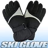 スキーグローブ メンズ