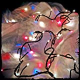 Patriotic Lights - Red, White, and Blue 80 Bulb, Multi-function Plug-in String Lights (20 Feet)