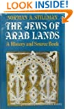 The Jews of Arab lands: A history and source book