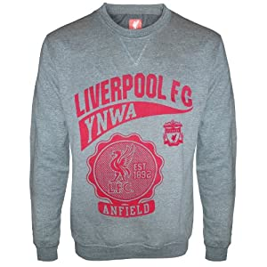 Liverpool FC Official Gift Mens Graphic Sweatshirt Top Grey Medium by Liverpool FC