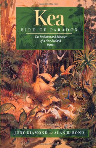 Kea, Bird of Paradox: The Evolution and Behavior of a New Zealand Parrot
