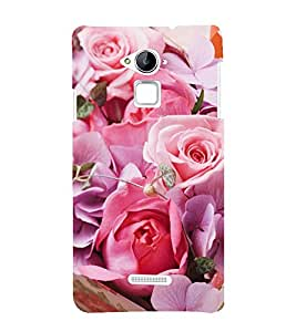 Vizagbeats Pink Roses Back Case Cover for Coolpad Note 3 Lite