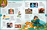 Ultimate Sticker Collection: Disney Princess (Ultimate Sticker Collections)