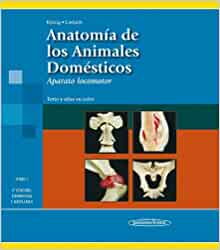 Anatomia de los animales domesticos / Anatomy of Domestic Animals