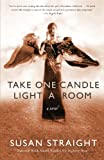 img - for Take One Candle Light a Room: A Novel book / textbook / text book