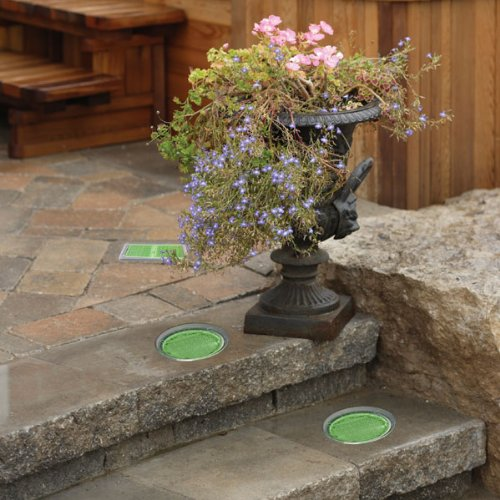 Round Green Solar Light 6 pack