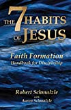 The 7 Habits of Jesus: Faith Formation Handbook for Discipleship