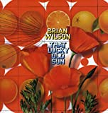 That Lucky Old Sun [VINYL] Brian Wilson