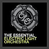 Essential Electric Light O
