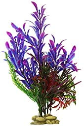 Aquatic Creations Hygrophilia Aquarium Plant, 8-Inch, Blue/Purple