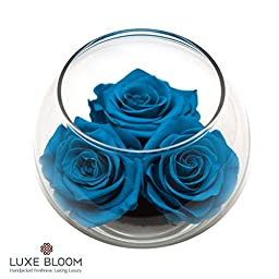 Luxe Bloom Caribbean Preserved Roses | Lasts 60 days | 3 Caribbean (blue) roses & greens in a 4"|256|256|?|f58cb08b02367db5668de00413952715|False|UNLIKELY|0.4110286235809326