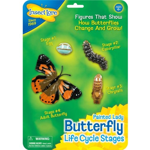 Butterfly Life Cycle Stages Characters, Plastic - 4 Piece Set; no. ILP4760