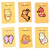 Enwraps Magnets Big (Assorted) Pack of 6