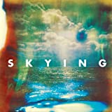 The Horrors Skying [VINYL]