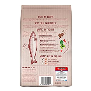 Purina Beyond Natural Dry Cat Food, Salmon and Whole Brown Rice Recipe, 6-Pound Bag, Pack of 1