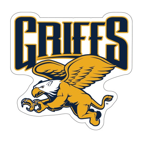 Canisius College Medium Magnet 'Official Griffs' back-469510