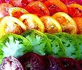David's Garden Seeds Tomato Beefsteak Rainbow DGS403050 (Multi Color) 500 Plus Organic Heirloom Seeds, Set of 10