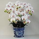 光触媒の胡蝶蘭 鉢植え 造花 Mサイズ-5本立 H70cm(白/花弁・薄赤-青のデザイン鉢)