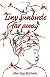 Christie Watson Tiny Sunbirds Far Away