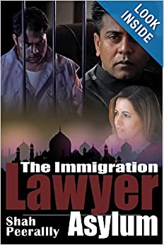 The Immigration Lawyer Asylum