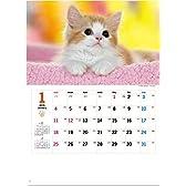 NK8455  サンキュー・キャット  2015年度版 (猫)