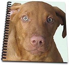 3dRose db487441 Vizsla Puppy-Drawing Book 8 by 8-Inch