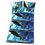 Dragons - niños Ropa de cama Juego de cama reversible Franela 80/80 x 135/200cm