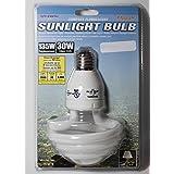Lights of America© 6500K 135W CFL Daylight Bulb - 2 Pack - 2000 Lumens - Cool White 30w